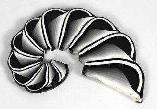 greyscale shell1