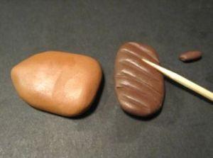 acorn5