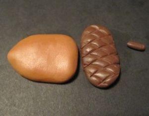 acorn6