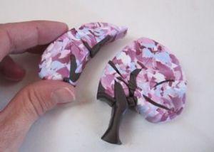 cherry tree6