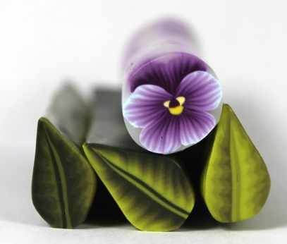pansy and leaves